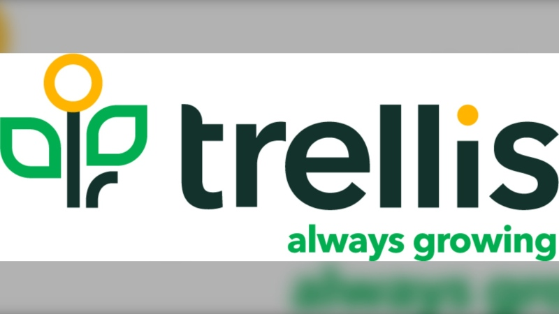 The Aspen Family and Community Network and Boys and Girls Clubs of Calgary will now be known as Trellis. (Courtesy Trellis)