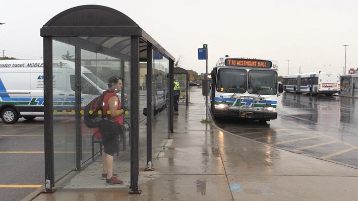 LTC bus shelter on Sept. 28, 2020. (Daryl Newcombe/CTV London)