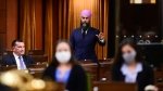 NDP leader Jagmeet Singh stands during question period in the House of Commons on Parliament Hill in Ottawa on Monday, Sept. 28, 2020. THE CANADIAN PRESS/Sean Kilpatrick