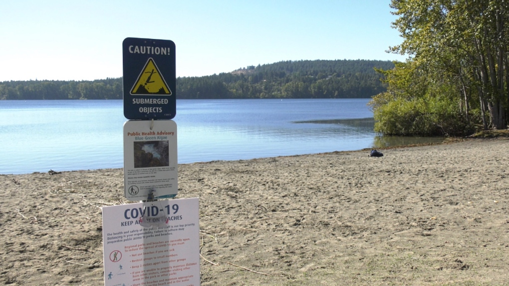 blue green algae warning elk lake