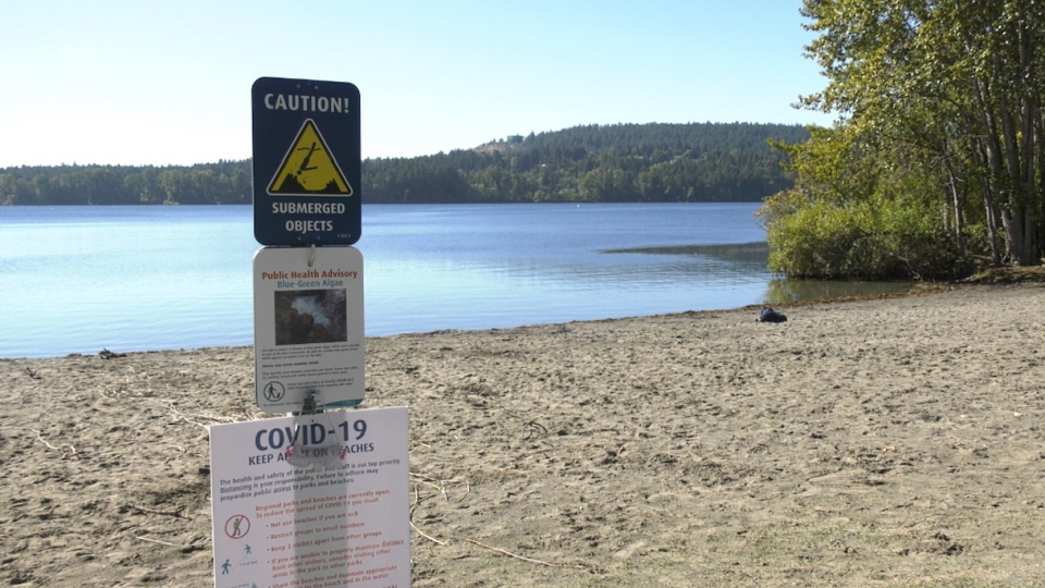 A blue-green algae warning sign is pictured at Elk Lake: Sept. 28, 2020 (CTV News)