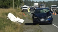 Nanaimo woman walking dog dies in collision