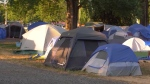 Tents pitched in Strathcona Park in September 2020.