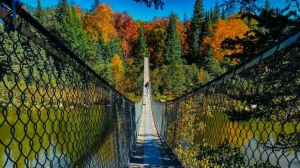 Pinawa suspension bridge. Photo by Melissa Tokariwski.