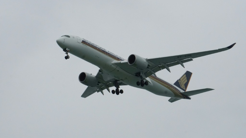 Singapore Airlines has scrapped plans for 'flights to nowhere' aimed at boosting coronavirus-hit finances after an outcry over the environmental impact. (AFP)