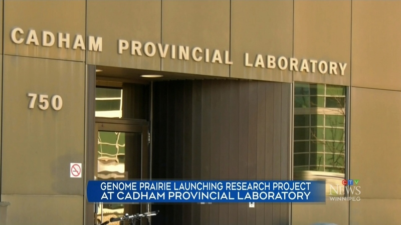 New COVID-19 research in Winnipeg