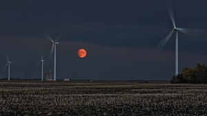 Nearly-full Corn Moon rising in the east. Photo by Allan Robertson.
