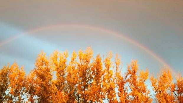 Rainbow over St. Francois Xavier this morning. Photo by Shannon Doyle.