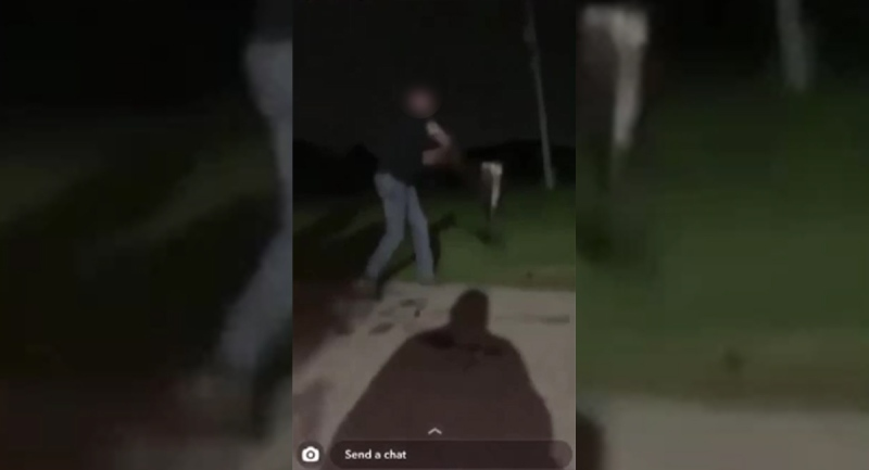 An image taken from video posted on social media shows a person swinging a goose before slamming it into the ground.