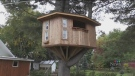 When the home itself was listed for sale, it was the treehouse that got real estate agent Jeremy Deering most excited.