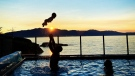 """Soaking up September!"" submitted by Sally Benner. Description: ""Myself, my son and grandson playing in our pool Sept. 29, 2020!  location is Halfmoon Bay at Burchill's B&B."""