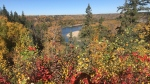 Battery Creek, which opened to public use Wednesday, brings the total distance of the Fort Saskatchewan-to-Devon trail to 70 kilometres. Sept. 30, 2020. (Dave Mitchell/CTV News Edmonton)
