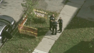 Police are investigating a fatal shooting in North York this morning.