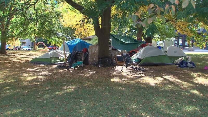 A group of homeless men and women living in tents in Toronto parks are in court fighting the city's efforts to remove them.
