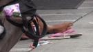 Homeless woman in London, Ont. (Celine Zadorsky/CTV London)