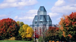 A view from Majors Hill park of the fall trees and the National Gallery of Canada. (Janet Stephens/CTV Viewer)