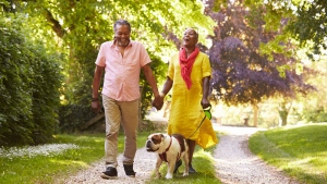 Happy seniors holding hands while walking their dog are seen in this undated file image. (iStock).