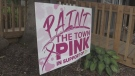 Paint the Town Pink for breast cancer awareness