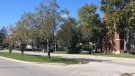 Giles Boulevard near Parent Avenue in Windsor, Ont., on Friday, Oct.2, 2020. (Chris Campbell / CTV Windsor)