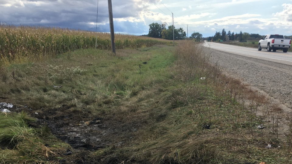 Burned grass is seen following a fiery crash