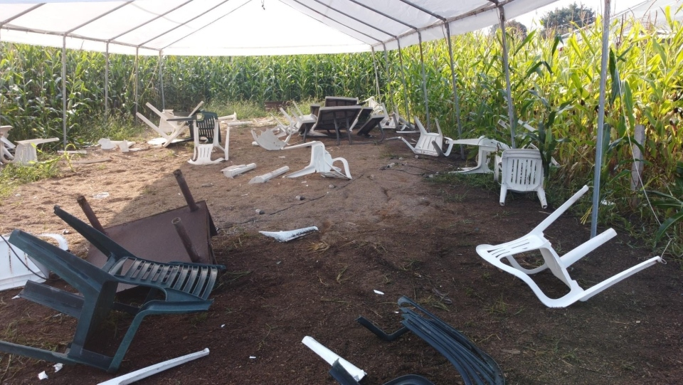 The vandalism prevented the farm from opening for most of the day Saturday, during what is normally one of its busiest weekends of the year. (Michael Bose)