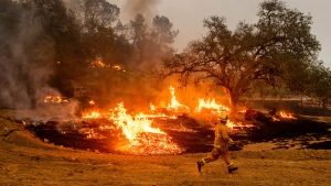 A firefighter runs past flames while battling the Glass Fire in a Calistoga, Calif., vineyard Thursday, Oct. 1, 2020. (AP Photo/Noah Berger)