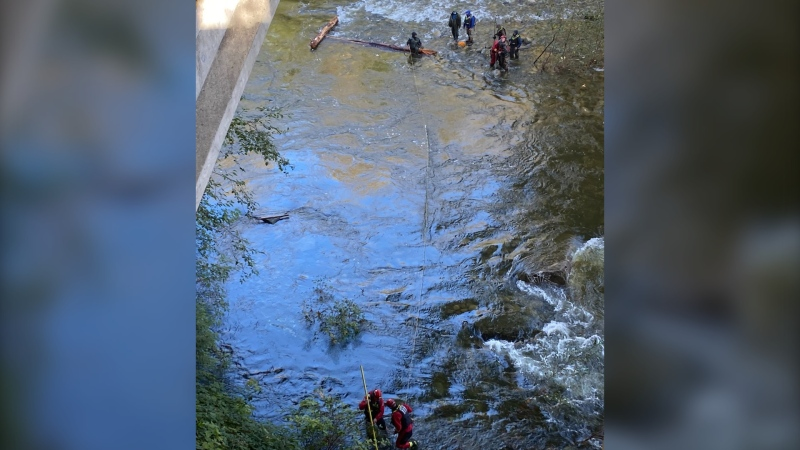 Firefighters in North Vancouver were called to rescue six fishermen from a sandbar in the Capilano River Saturday. (Twitter/@DNVFRS)