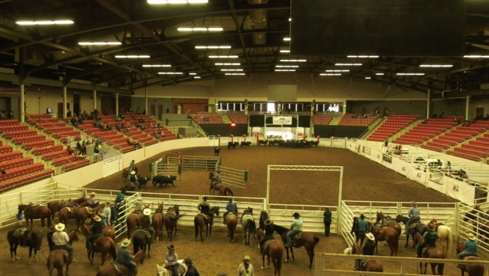 It was a much different atmosphere for competitors and spectators of a rodeo event in Calgary over the Thanksgiving long weekend.