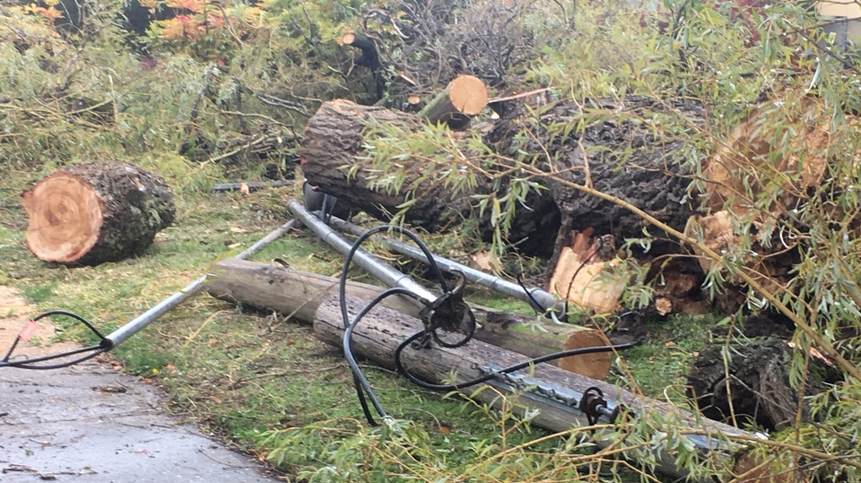 A toppled power pole and tree are seen at the intersection of Kings Road and Wark Street amid severe wind storms on Vancouver Island: (CTV News)