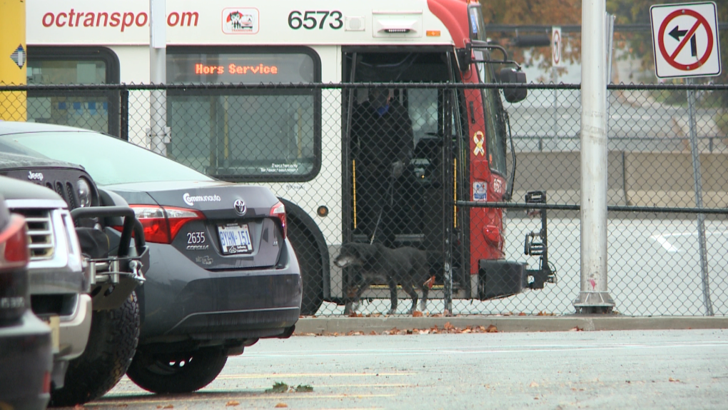 Tunney's Pasture suspicious package dog