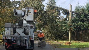 High winds that triggered warnings across Vancouver Island brought down trees and knocked down power to tens of thousands of BC Hydro customers in mid-October.