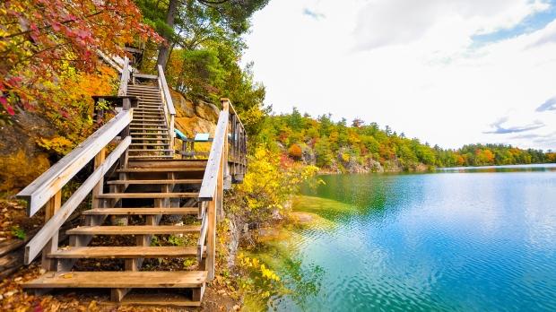 Autumn Bliss at Pink Lake. (Vinu Vairavanathan/CTV Viewer)