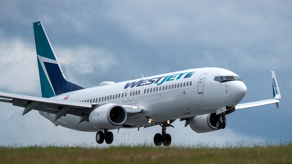 WestJet's 'vice-president of corporate communications says the company has flown more than 25,000 flights since the pandemic began and there has been no cases of COVID-19 being transmitted on a flight. (File photo)