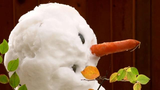Calgary snowman