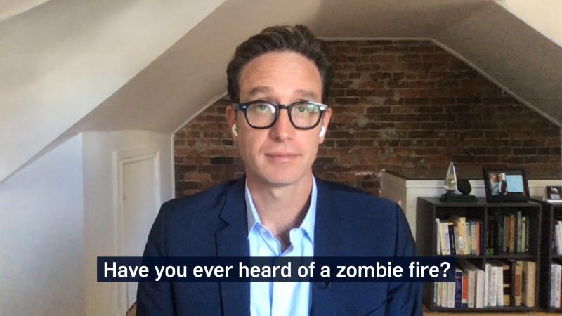 dan riksin zombie fires