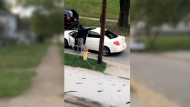 Cell phone video shows driver shooting at kids