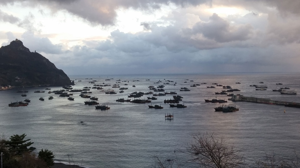 Chinese pair trawlers anchored in the harbour of Ulleungdo Island in South Korean waters, October 2016, in the Sea of Japan. (The Outlaw Ocean Project)