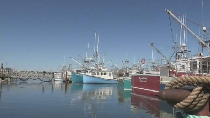 Tensions rise over lobster fishery