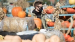 A man wears a face mask as he shops for a pumpkin at a market on Sunday, October 11, 2020, as the COVID-19 pandemic continues in Canada and around the world. (Graham Hughes/The Canadian Press)