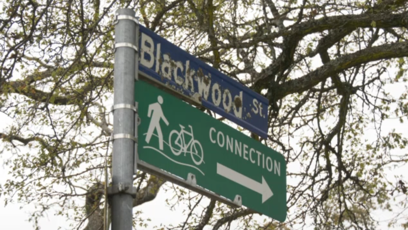 Officers were called to a home in the 3000 block of Blackwood Street around 8:40 a.m. Saturday for a report of a break-in in progress. (CTV)