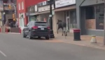 A still image from a video submitted to CTV News. (Courtesy Roxanna Kaminski)