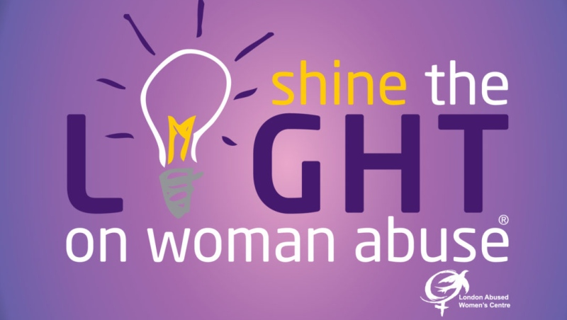 Shine the Light logo