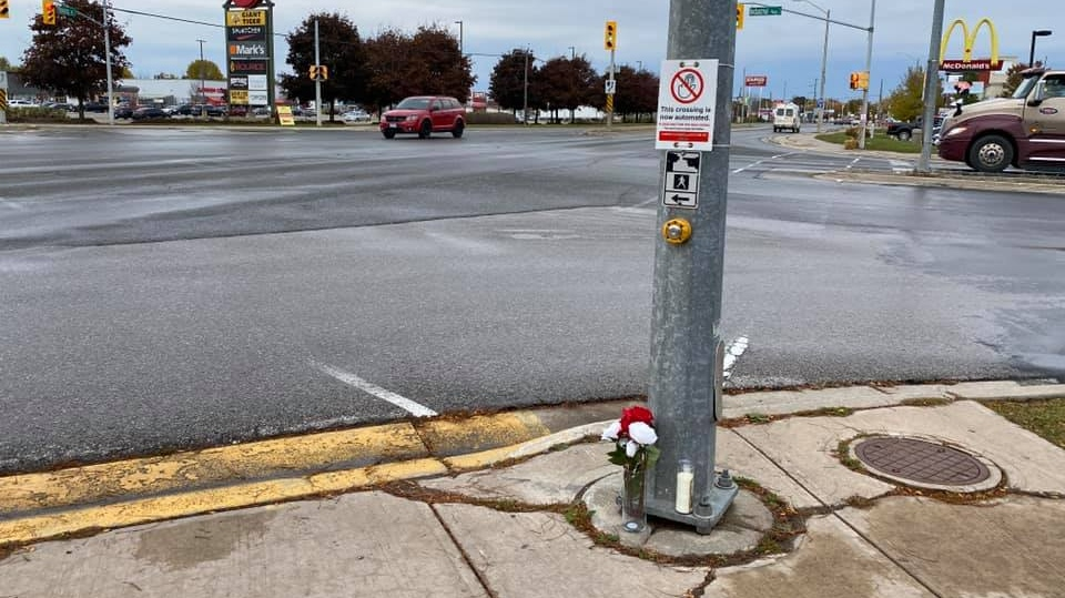 Flowers and candle are shown at the intersection where a beloved wild turkey was killed on Sunday October 18, 2020 (Phil Muller)