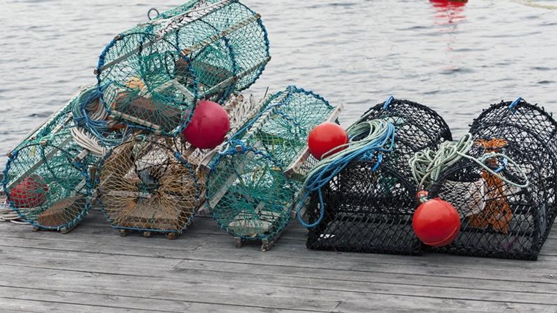 Ottawa under more pressure to intervene in Lobster