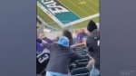 Fans brawl at Eagles and Ravens game