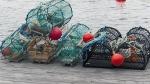Mi'kmaq fishermen being denied traps, gas: Chief