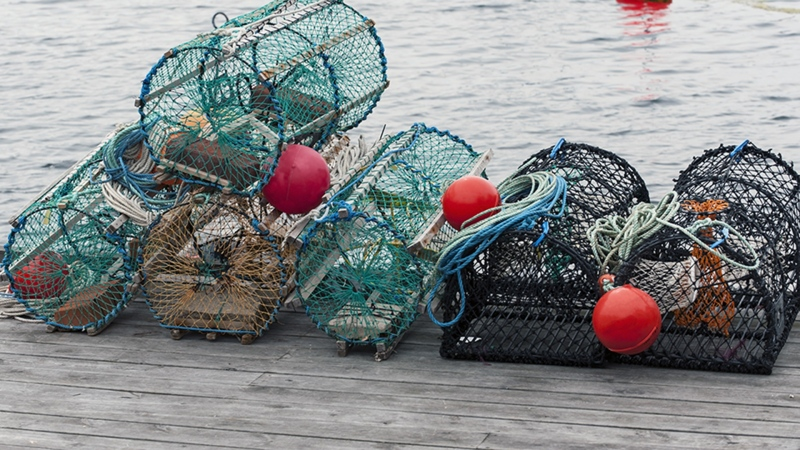 Mi'kmaq fishermen being denied traps, gas: Chief
