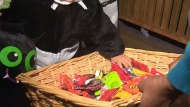 No trick-or-treating 'disappointing for the kids'