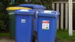 Human remains found in recycling bin