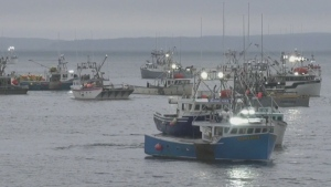 What Ottawa is doing about the Lobster fishing dis